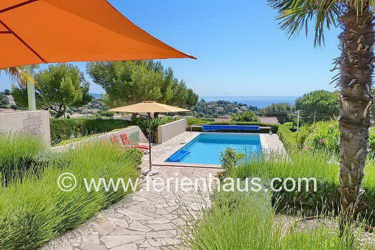 Lavendelblüte im Garten der Villa mit Pool in St. Aygulf, Südfrankreich