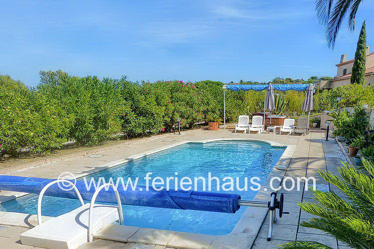 Oleander zäumt den Poolbereich der Villa auf Giens in Südfrankreich