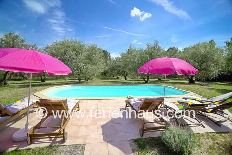 Pool mit Liegen -  Ferienhaus COT145 in Seillans in der Provence